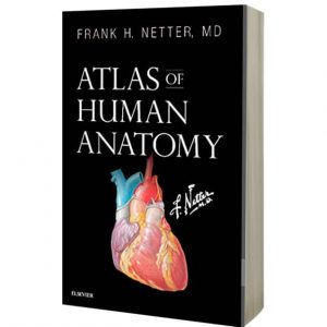 Atlas of Human Anatomy (Netter Basic Science) 7th Edition